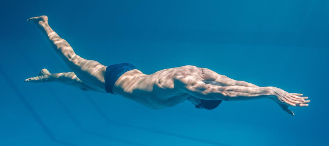 nadar músculos